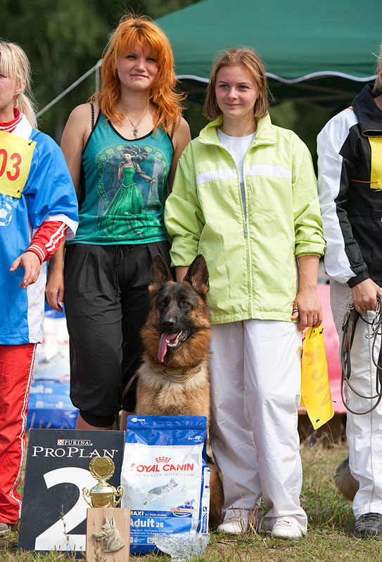 немецкая овчарка фото r_2009-1268 r_2009-1268